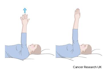 Digram showing shoulder blade stretch forwards